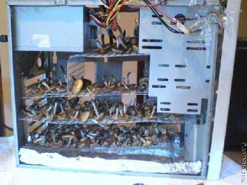 компьютеры 020