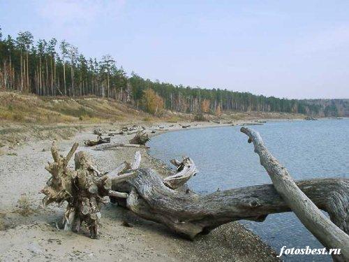 природа 085