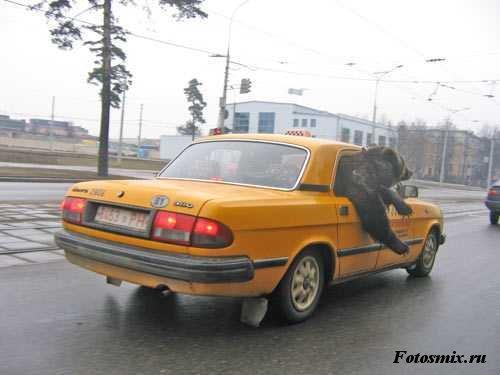 auto 139